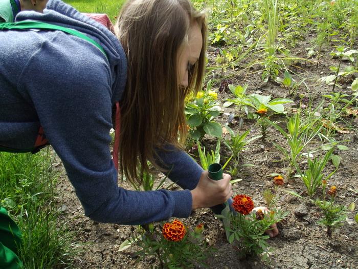 Zahradník - dílny - Škola Jarov