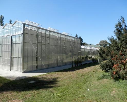Škola Jarov - Nový skleník