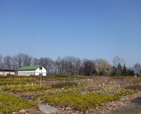 Provozní zahrada