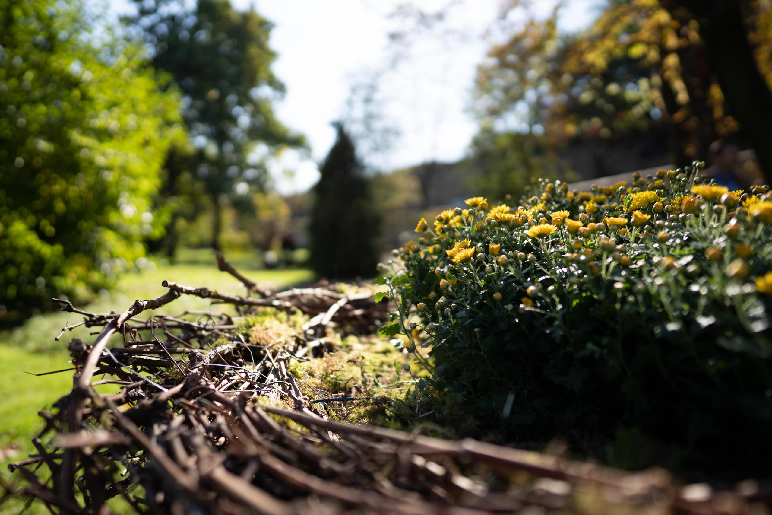 4_Zahrada 100 let_instalace