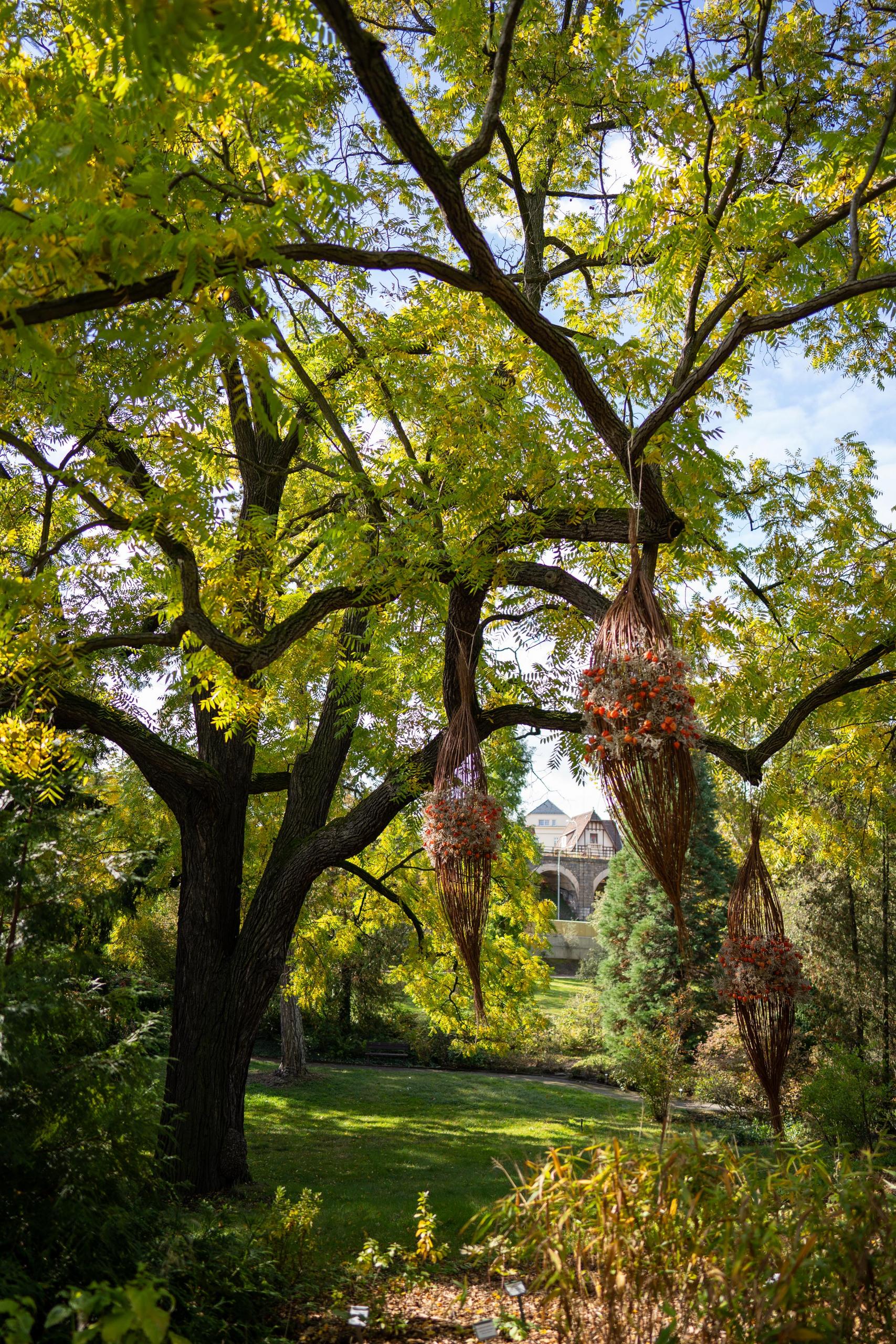 9_Zahrada 100 let_instalace