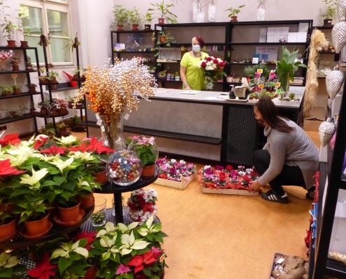 Nové květinářství Jungmannova ulice SOŠ Jarov