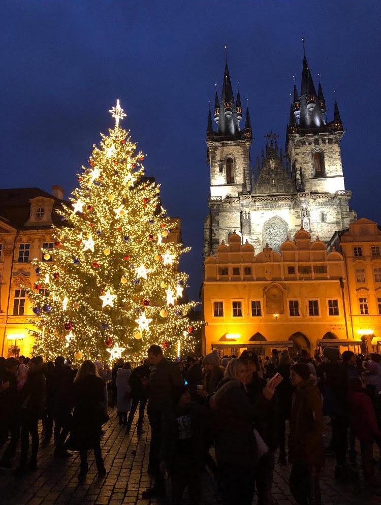 Výrobek z vánočního stromu